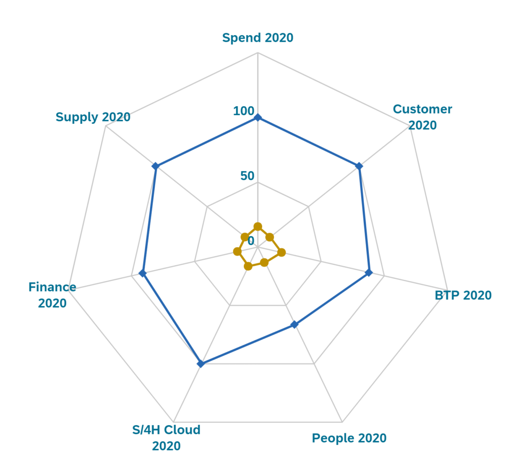SAP diamand initiative line of business results