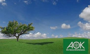 Picture of a tree on a green field and a blue sky, valantic Case Study AOK Niedersachsen