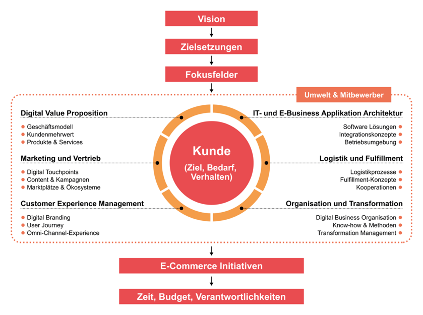 Infografik B2B Strategieframework