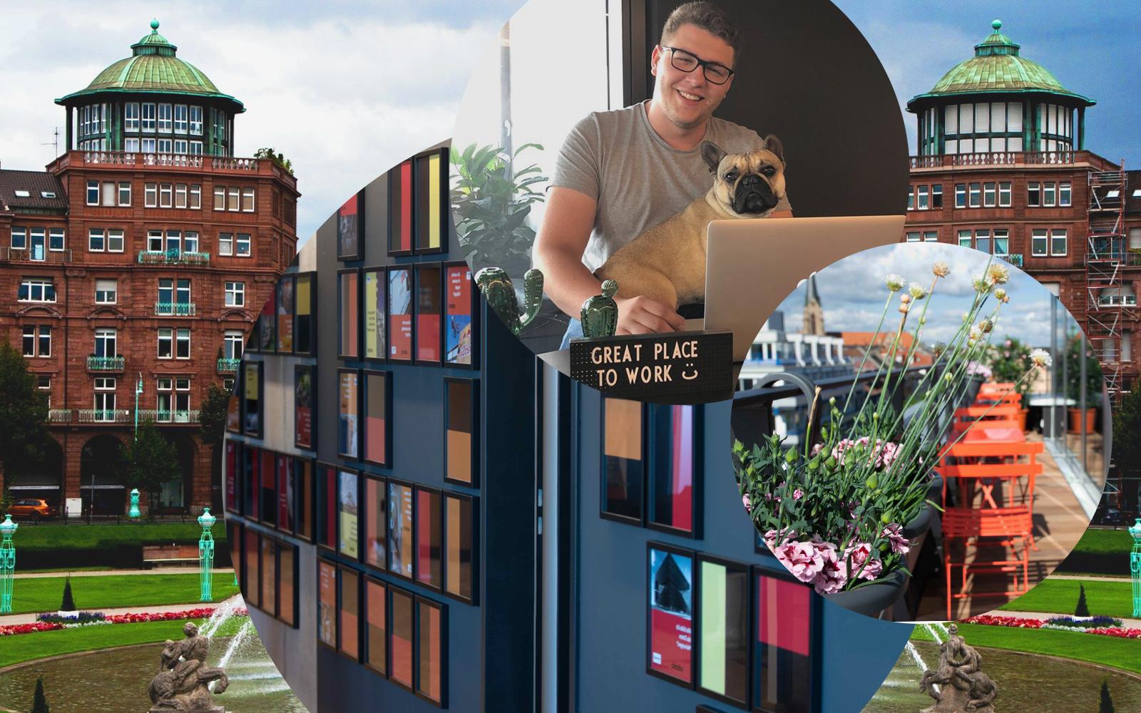 Bild von Erik Töpfer, Auszubildender IT Systemintegration bei valantic Customer Engagement and Commerce, im Hintergrund die Stadt Mannheim sowie Bilder der Büroräume in Mannheim