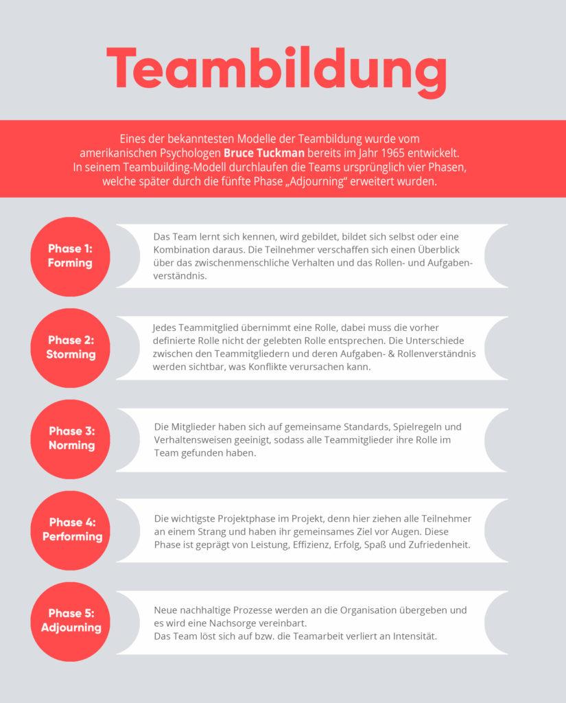 Auflistung der Phasen der Teambildung nach Tuckman, Infografik von valantic
