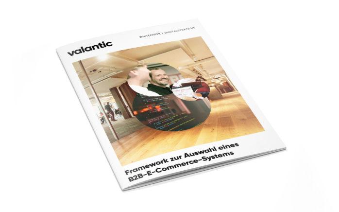 Bild des valantic Whitepapers: Framework zur Auswahl eines B2B-E-Commerce-Systems