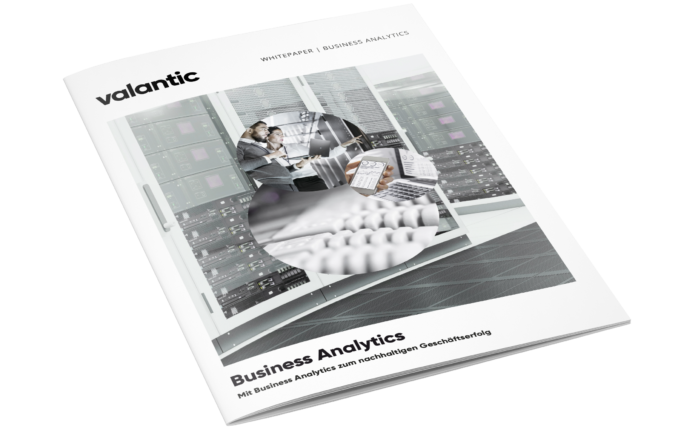 This image shows our Business Analytics whitepaper.